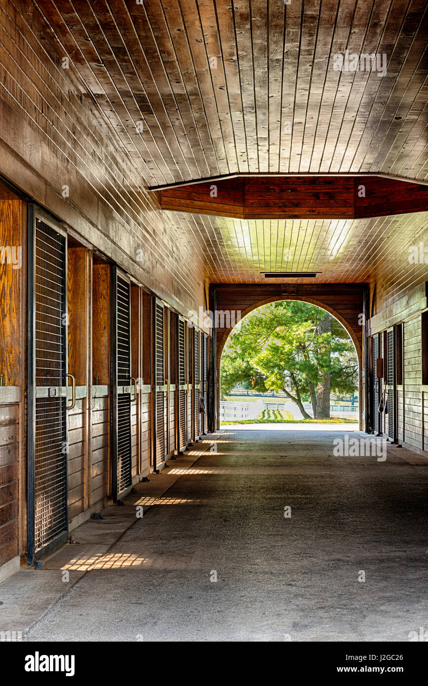 Usa Lexington Ky Horse Barn Interior At Donamire Farm Large Stock Photo Alamy