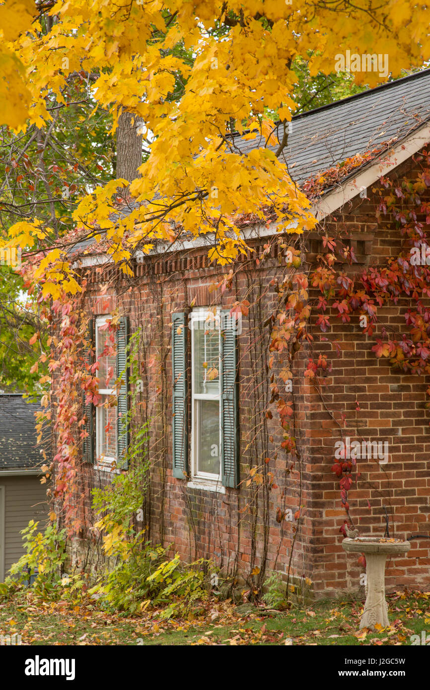 USA, Iowa, Mt Vernon. Brick house in autumn. Credit as: Don Grall / Jaynes Gallery / DanitaDelimont.com - Stock Image