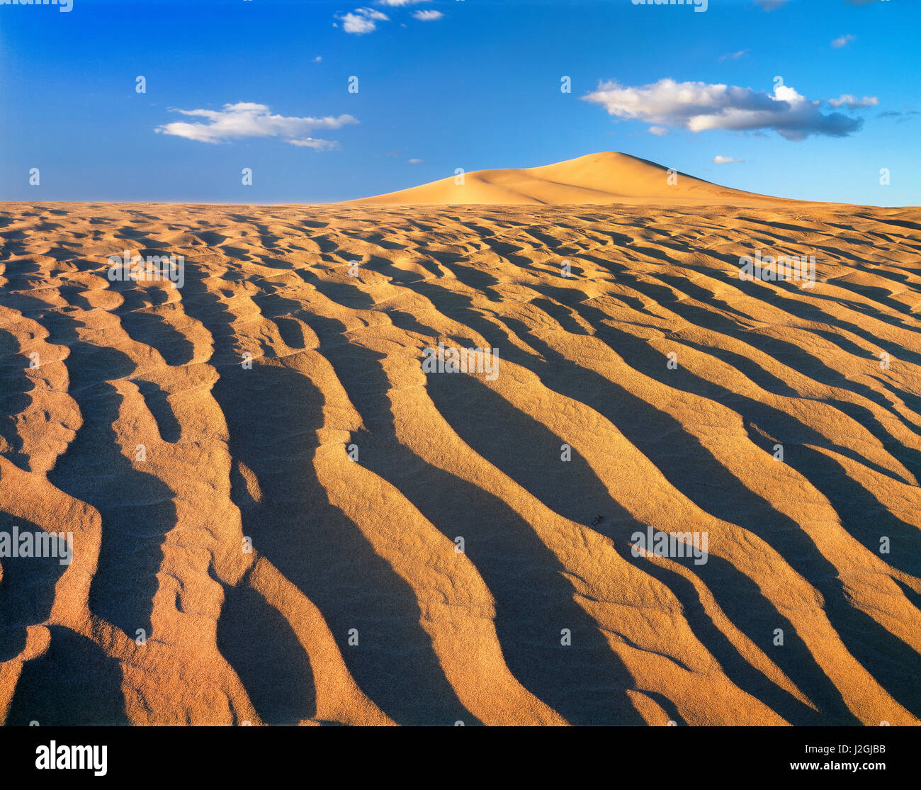 USA, California, Dumont Dunes, Patterns in the dunes. (Large format sizes available) - Stock Image
