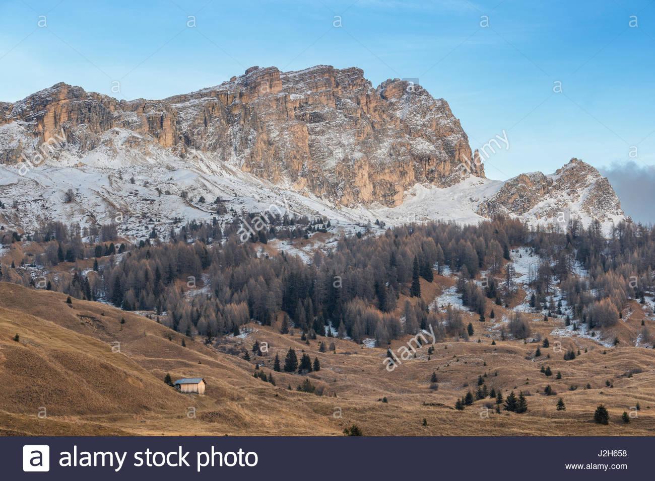 Europe, Italy, Veneto, Belluno. Landscape on the Cherz plateau with Settsass mountain on the background, Dolomites - Stock Image