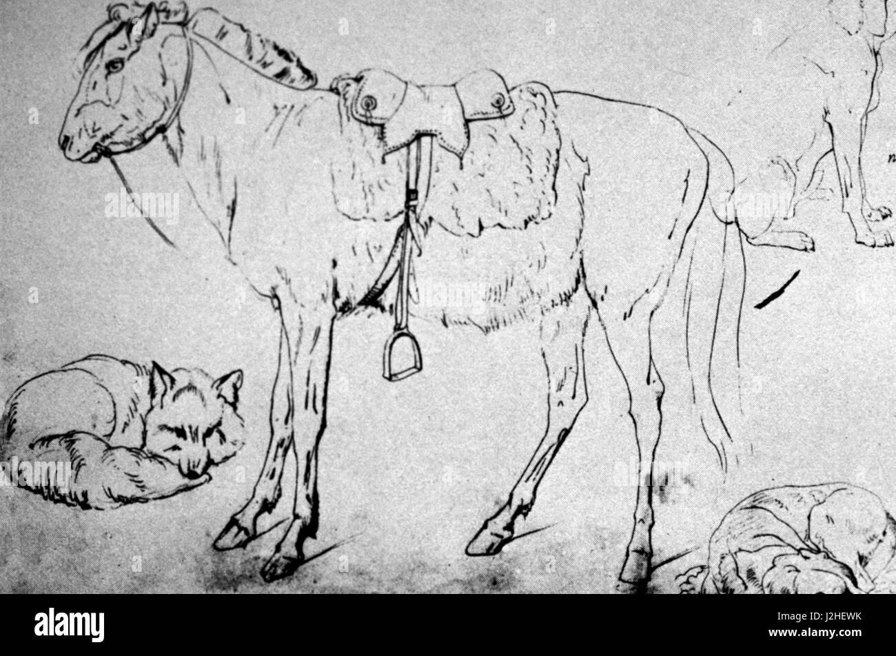 Historic 1852 Sketch by Kurz of a Blackfeet Indian pony - Stock Image