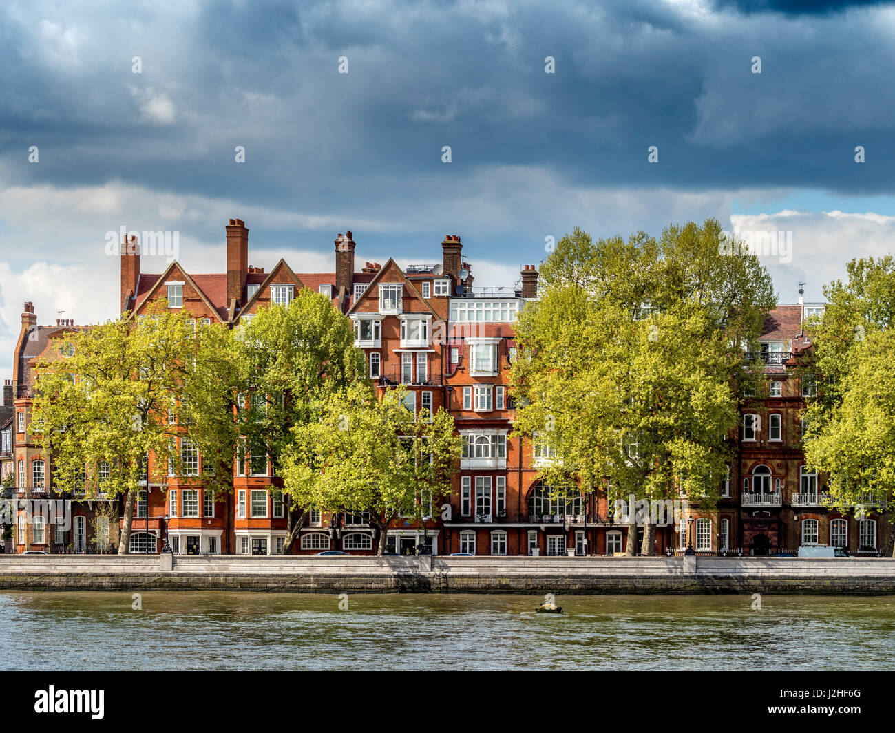 Houses along Chelsea Embankment, North bank of the river Thames, London, UK. - Stock Image