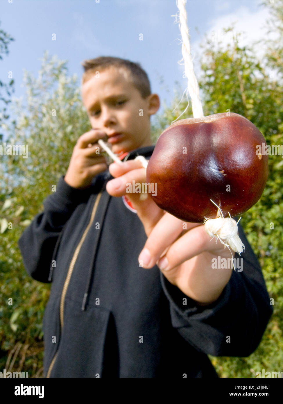 Boy Playing Conkers - Stock Image