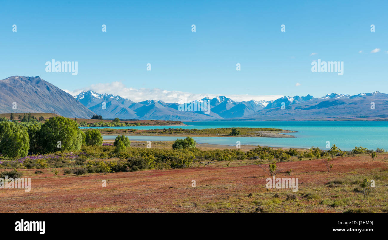 View of Lake Tekapo and Southern Alps, Canterbury Region, Southland, New Zealand - Stock Image