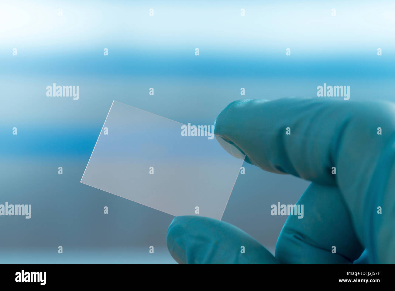 Person holding microscope slide. - Stock Image