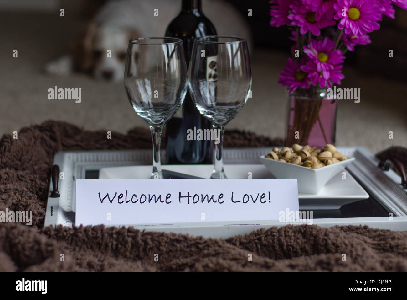 A welcome home surprise with wine and snacks and the family dog. - Stock Image