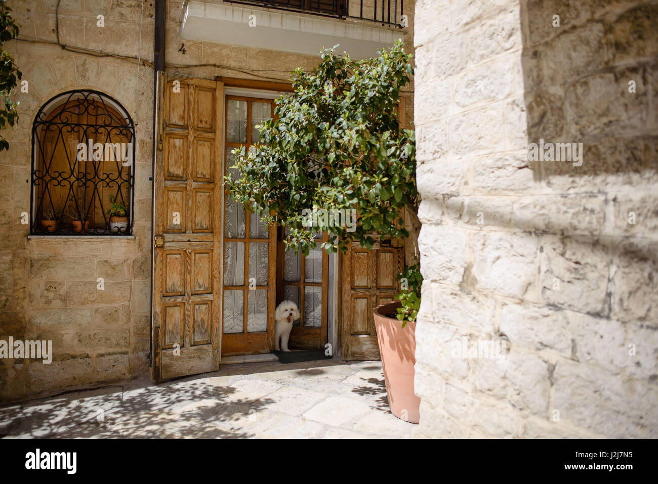 Watchdog of a flat in Bari, Italy - Stock Image