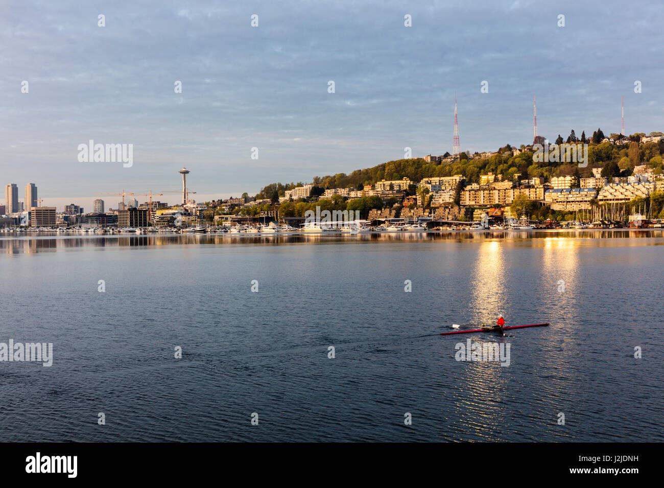 Morning rowing in Lake Union in Seattle, Washington State, USA (Large format sizes available) - Stock Image