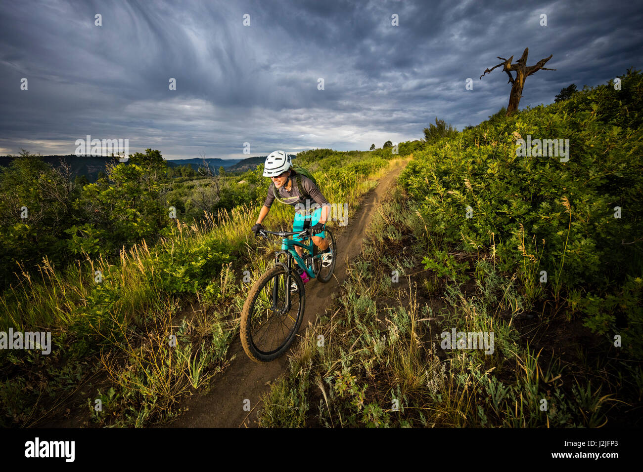 Nichole Baker mountain biking on the Twin Buttes trail network, Durango, CO. - Stock Image