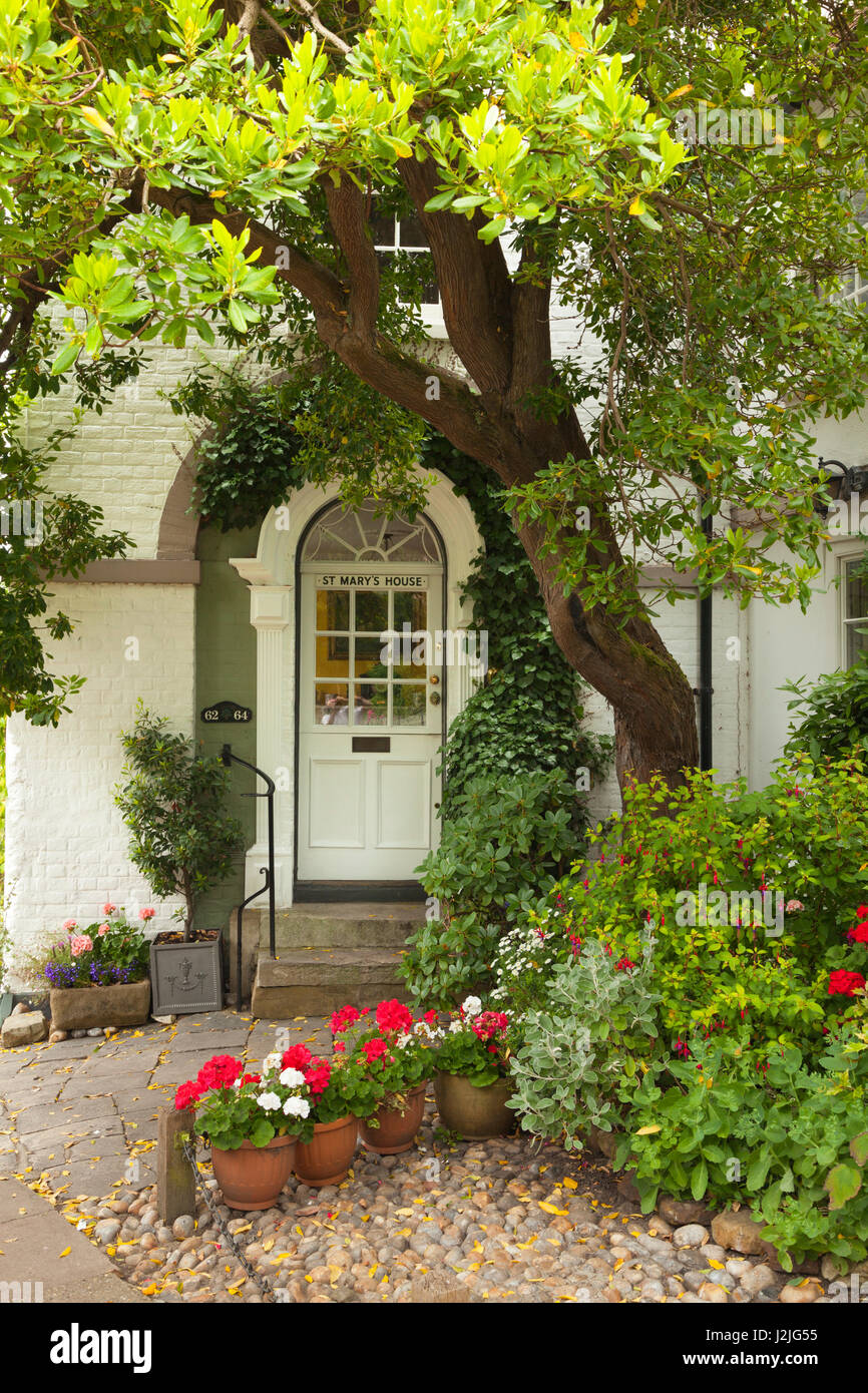 Flowers at the entrance of a house in Church Lane, Rye, East Sussex, Great Britain - Stock Image