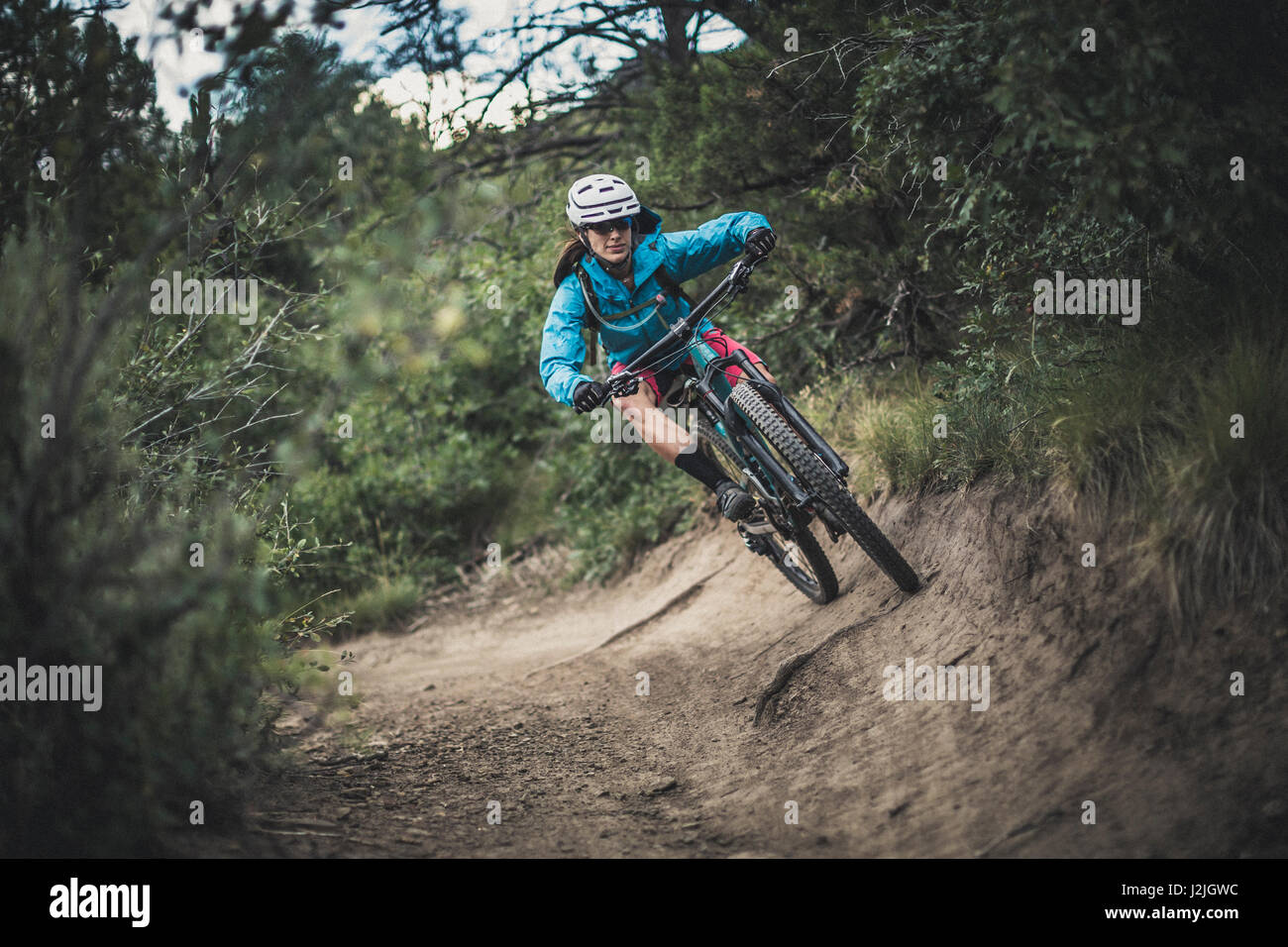 Nichole Baker mountain biking on the Meadow Loop trail, Horse Gulch area, Durango, CO. - Stock Image