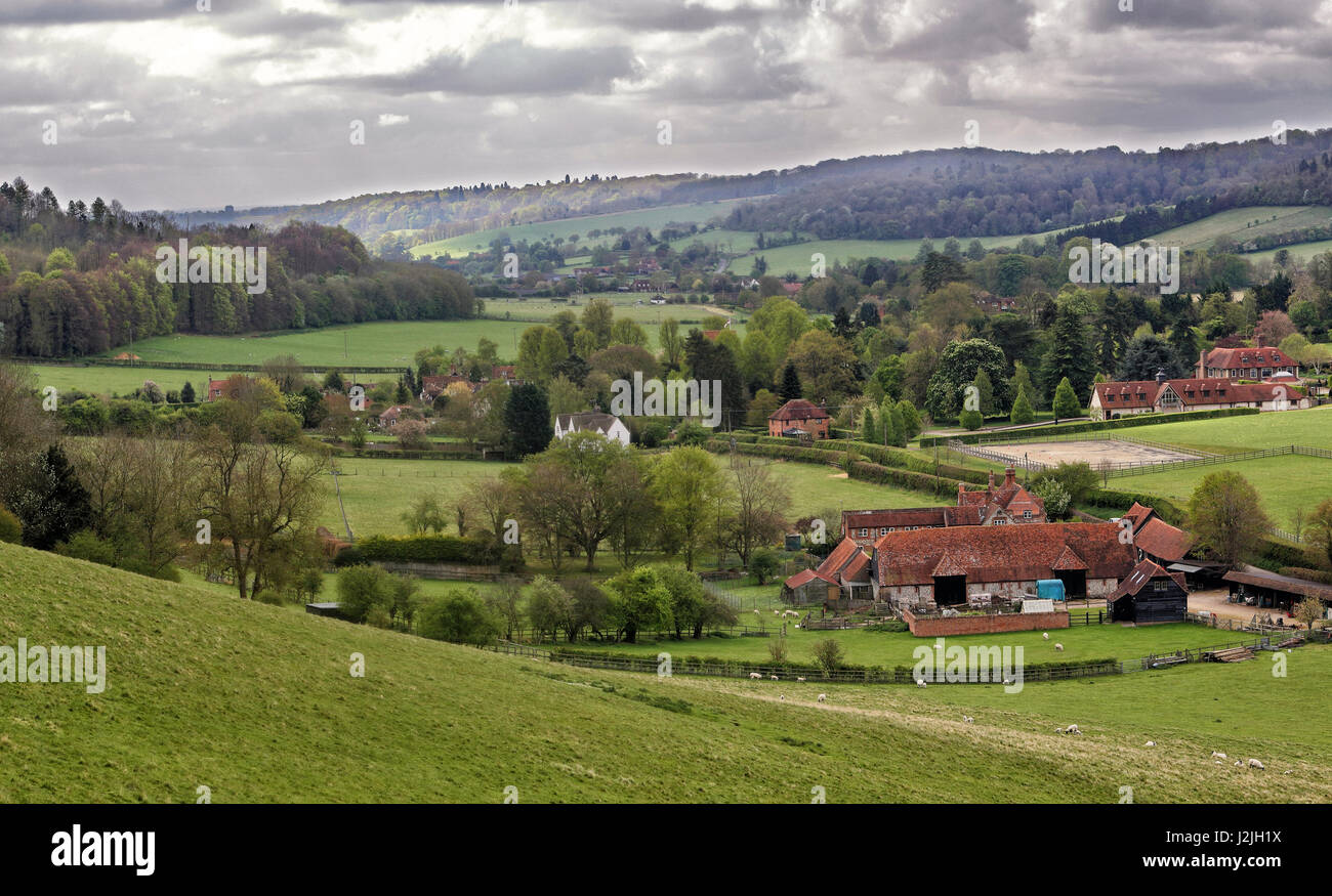 A Rural Landscape in the Chiltern Hills in England with grazing sheep and Farmhouse - Stock Image