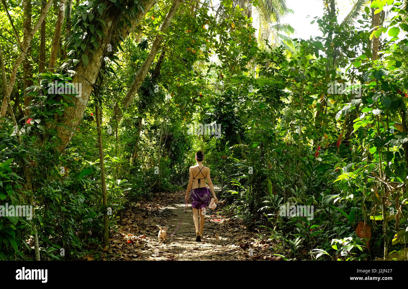 A woman and her dog walk through the palm trees on Playa Chiquita on Costa Rica's Caribbean Coast. Stock Photo