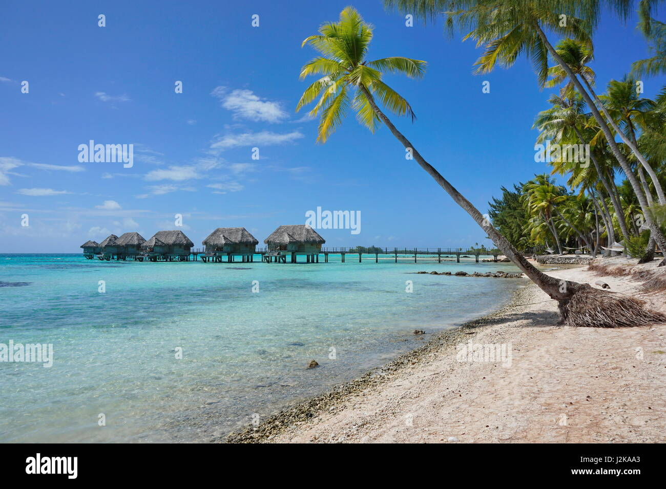 Tropical resort overwater bungalows in the lagoon and seashore with coconut palm trees, Tikehau atoll, Tuamotu, - Stock Image