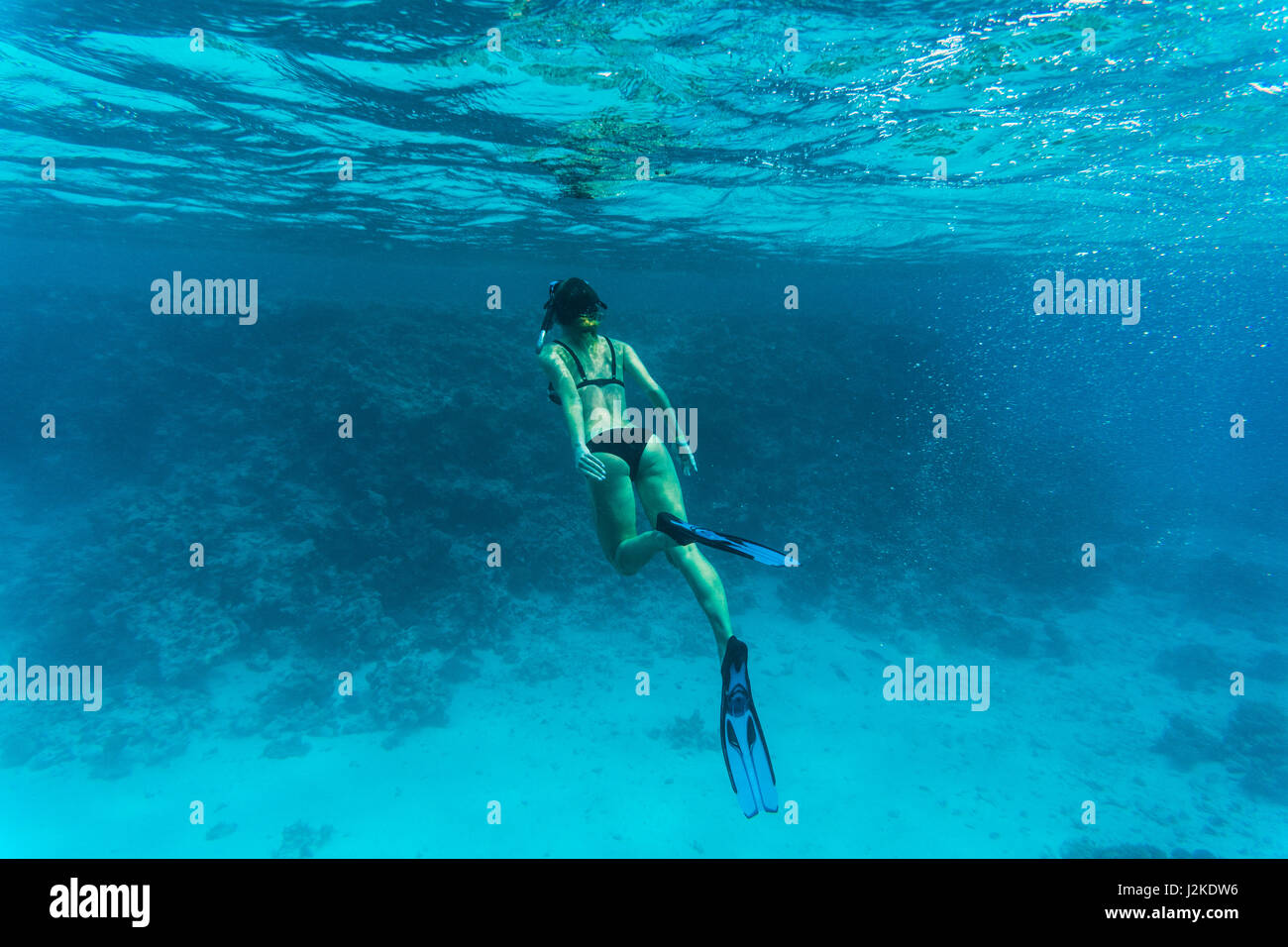 Underwater photo of woman snorkeling and diving in a clear tropical water at coral reef Stock Photo