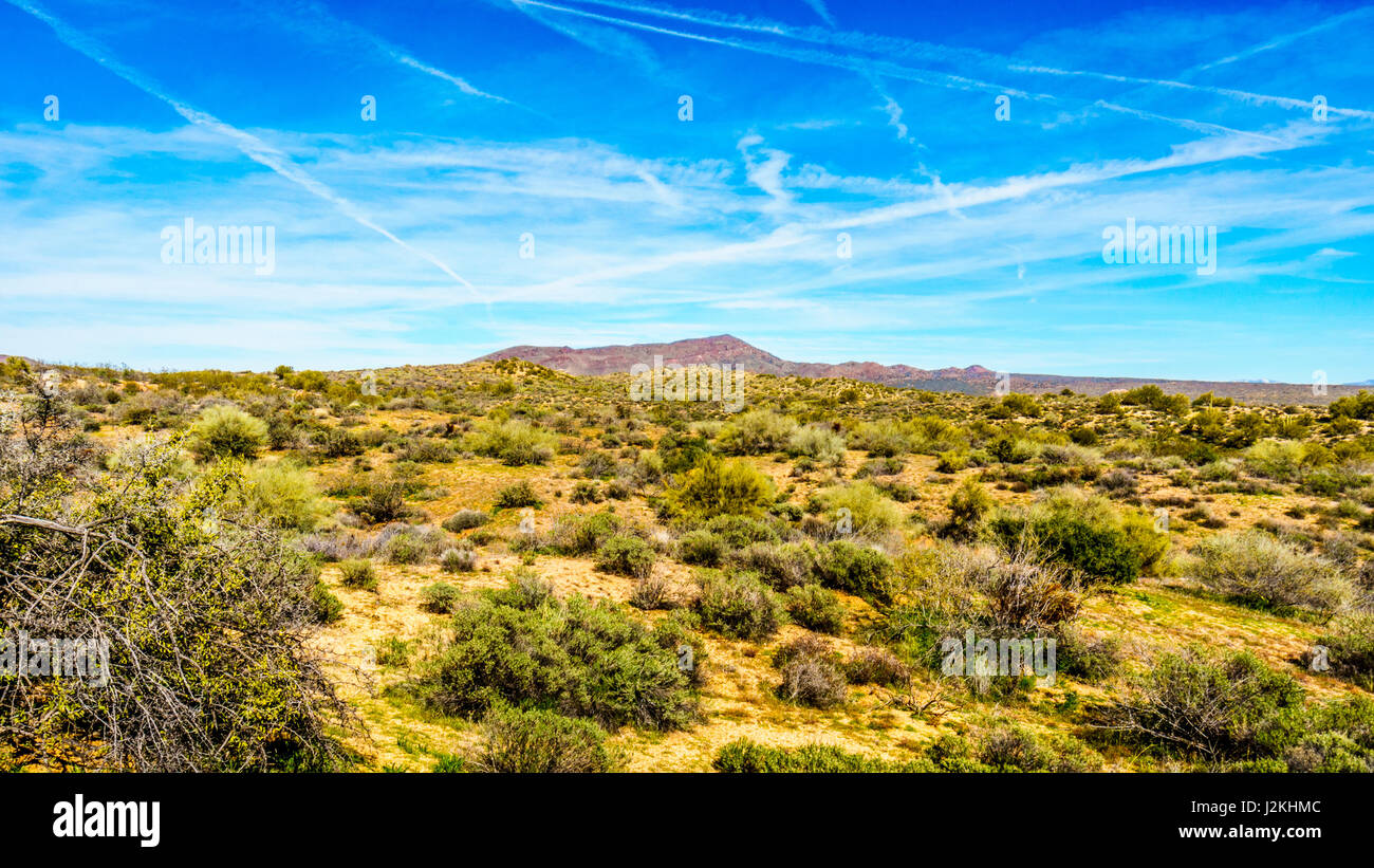 Beautiful desert scenery of Lake Bartlett area in Tonto National Forest  in the Arizona desert in the United States. - Stock Image