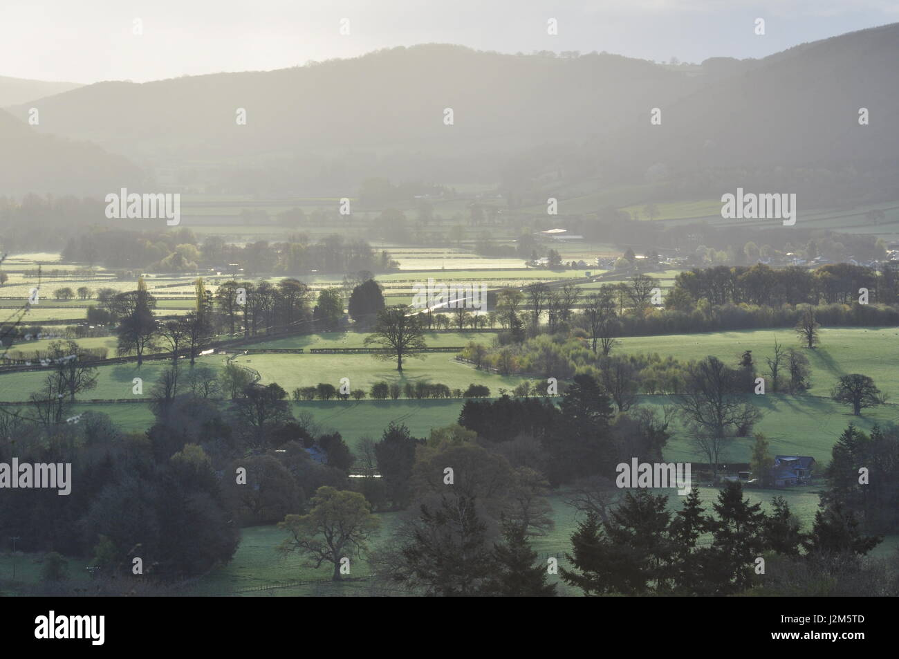 Looking east from OS grid ref 219597 towards Hanter Hill and Hergest Ridge in the Welsh Marches,Powys, Wales - Stock Image