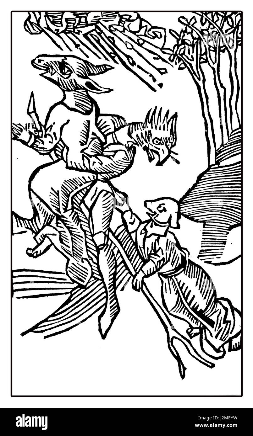 Medieval drawing representing witches with animal heads flying on the back of a forked wooden branch - Stock Image