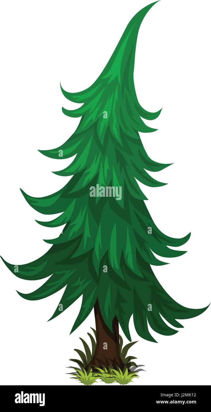 Isometric Cartoon Spruce Fir Tree - Element for Tileset Map