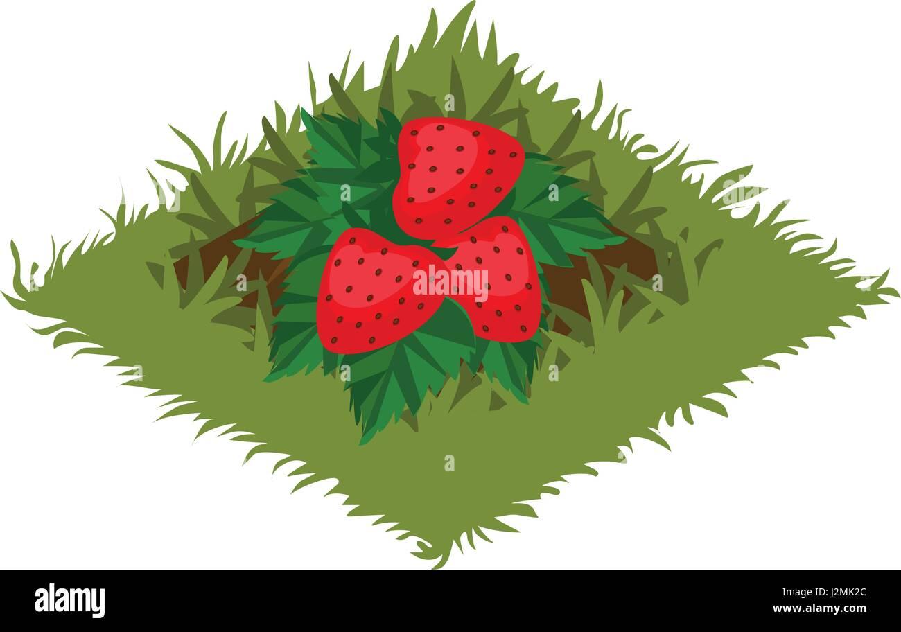 Strawberry bush, drawn by pencil. - canstockphoto.com