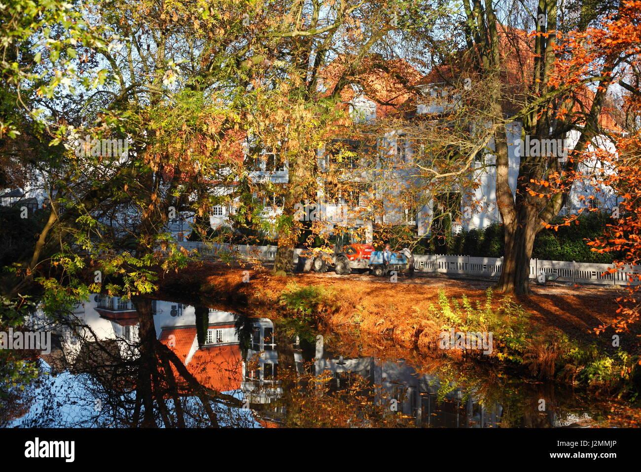 Houses in Classic Style,  colored Trees in Autumn, Oldenburg in Oldenburg, Germany  I Klassizistische Wohnhaeuser, Stock Photo