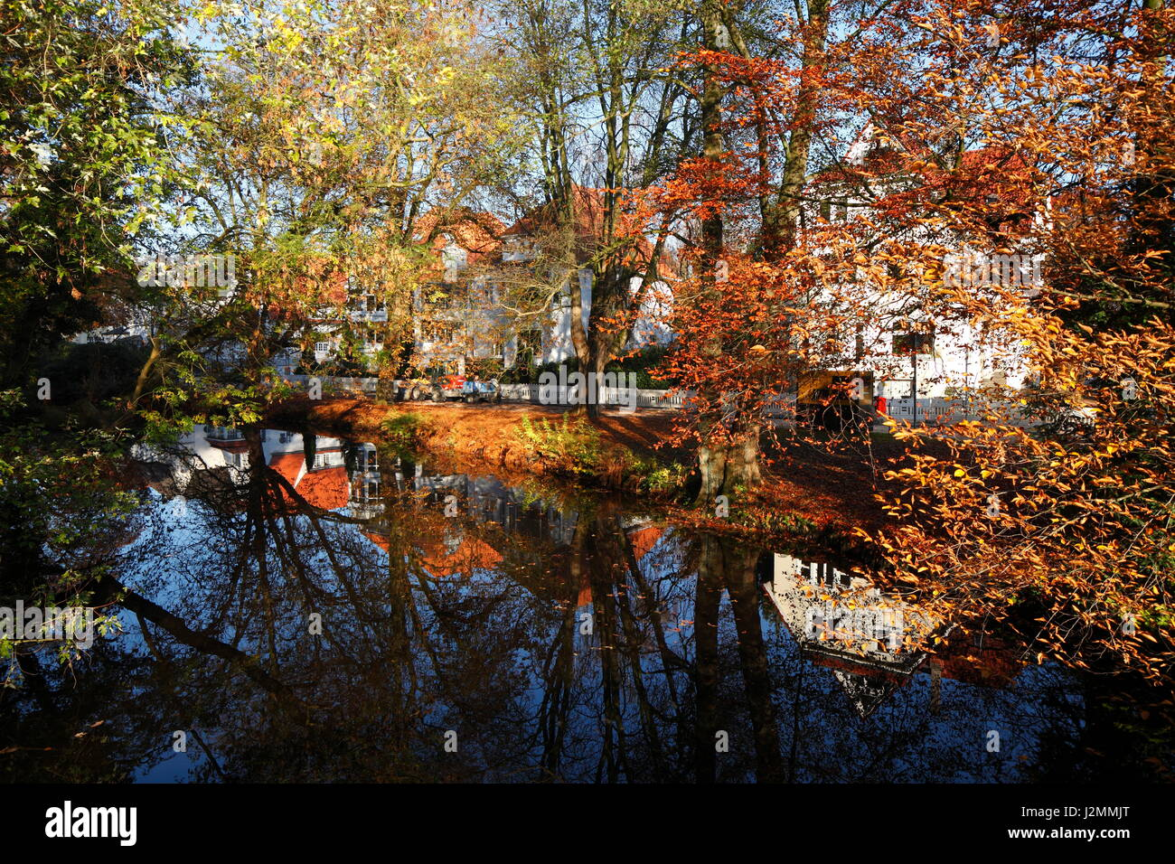 Houses in Classic Style,  colored Trees in Autumn, Oldenburg in Oldenburg, Germany  I Klassizistische Wohnhaeuser, Stock Photo
