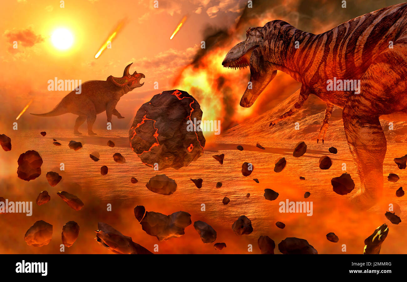 Image result for cretaceous extinction