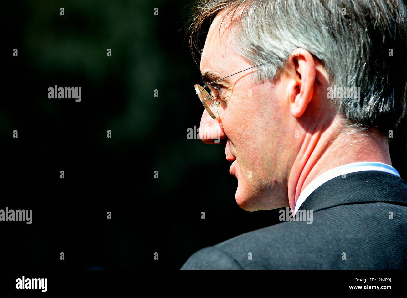 Jacob Rees-Mogg MP (Con: North East Somerset) on College Green, Westminster 18th April 2017 shortly after a general - Stock Image
