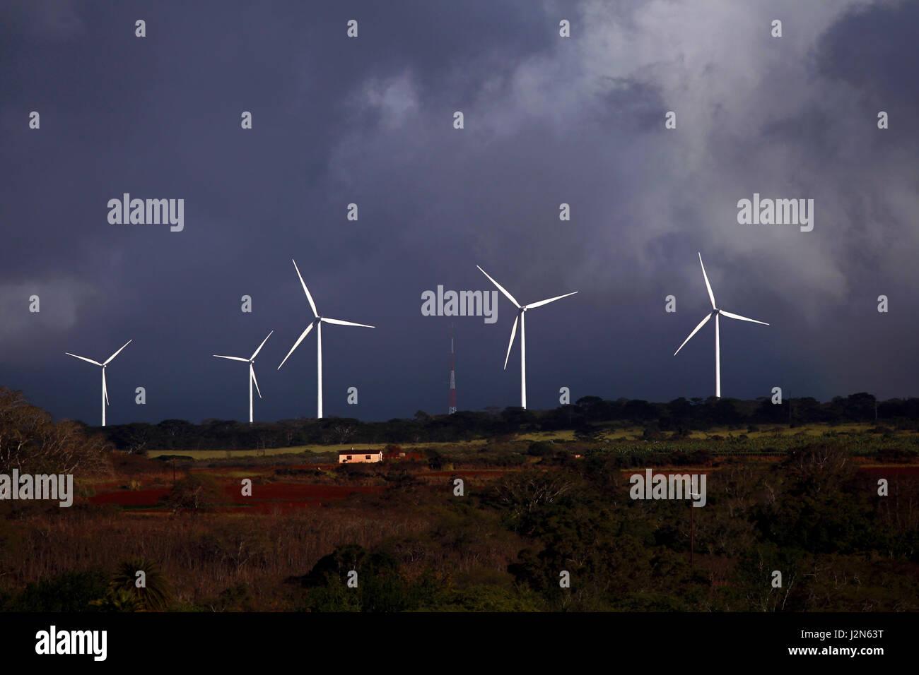 Wind Turbines on the north shore of Oahu, Hawaii - Stock Image
