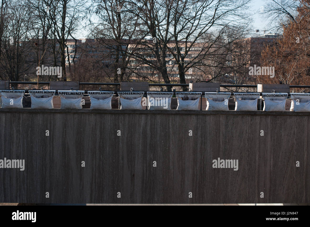 Urban gardening on the roof of Haus der Kulturen der Welt, Berlin, Germany. Temporärer Stadtgarten / Kunstinstallation, - Stock Image