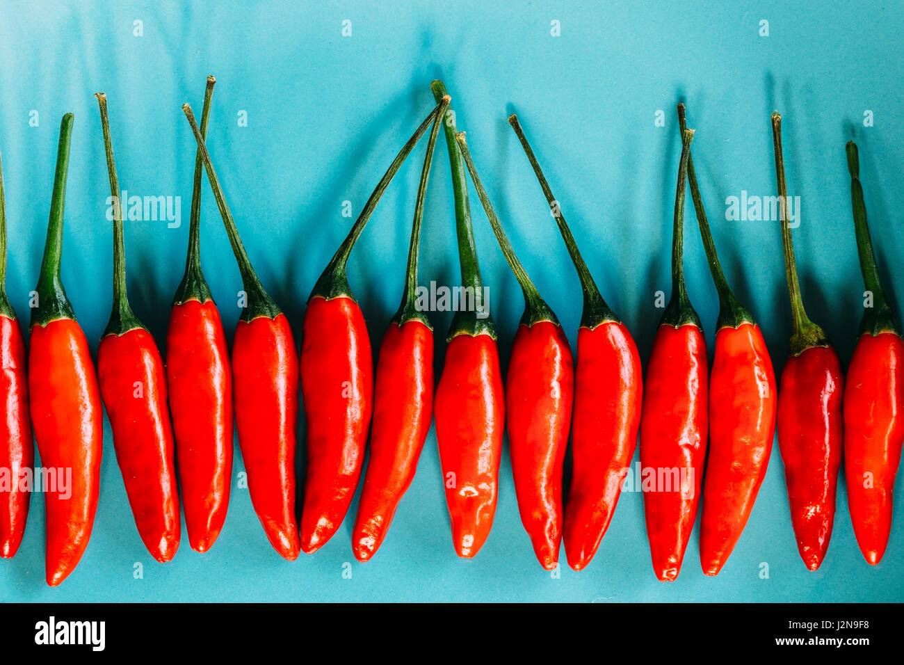 Red chillies - Stock Image
