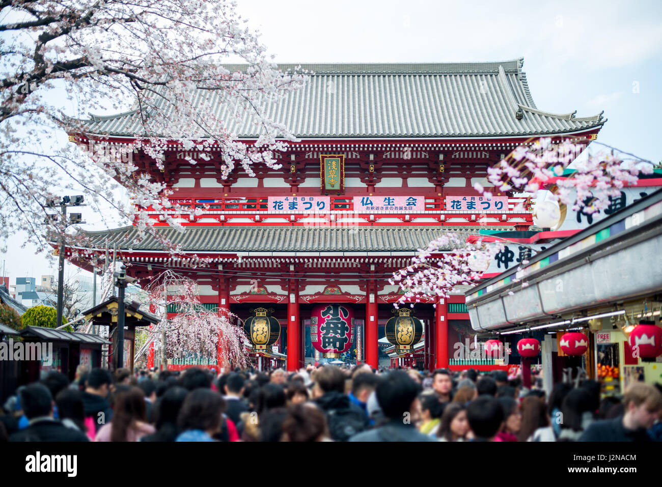 Undefined Tourist in Sensoji shrine. Sensoji temple at Asakusa district in Tokyo, Japan. - Stock Image