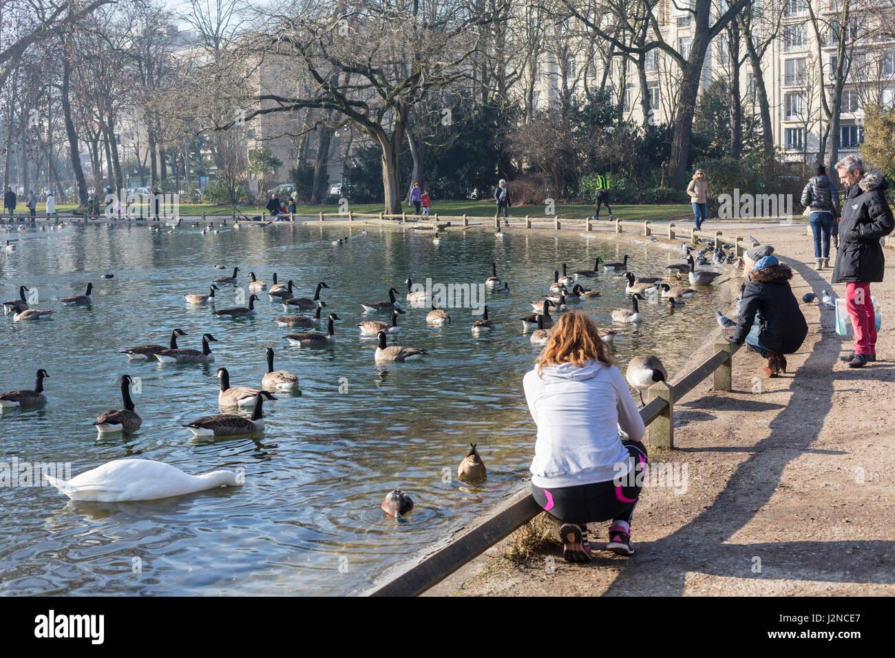 people feeding ducks and swans, Saint James pond, Bois de Boulogne, Paris, France - Stock Image