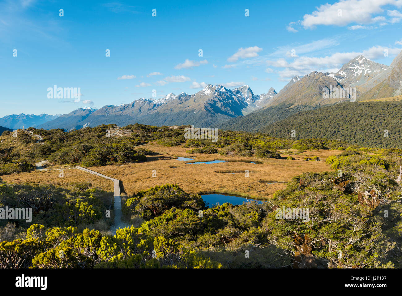View of Little Mountain Lake and Ailsa Mountains, Key Summit Track, Fiordland National Park, Southland Region, New - Stock Image