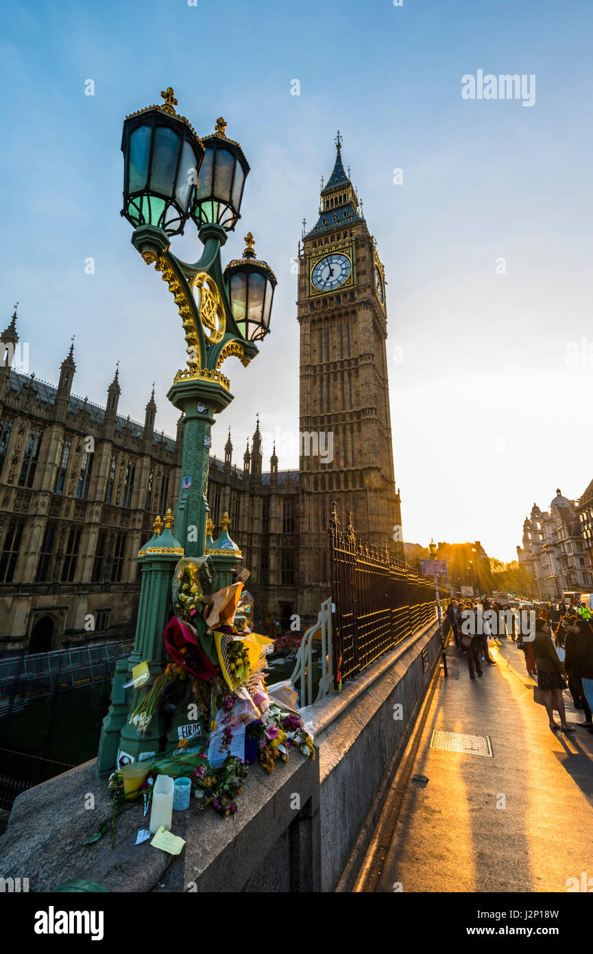 Big Ben and flowers commemorating terrorist attack on Westminster Bridge, backlit, evening light, City of Westminster, - Stock Image
