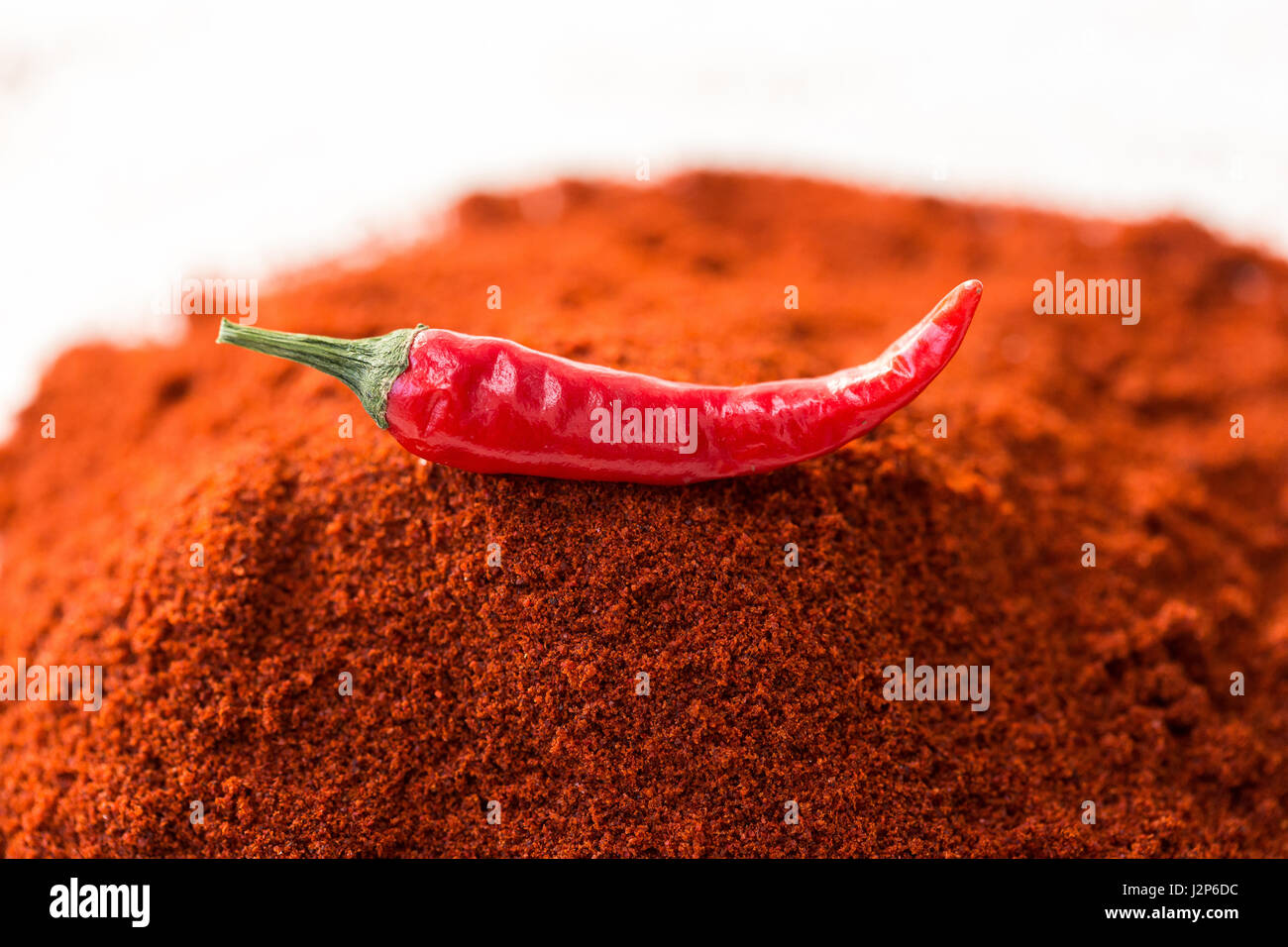 chili red hot pepper, concept of popular spice - delicious juicy pod of chili red pepper is isolated on top of red - Stock Image