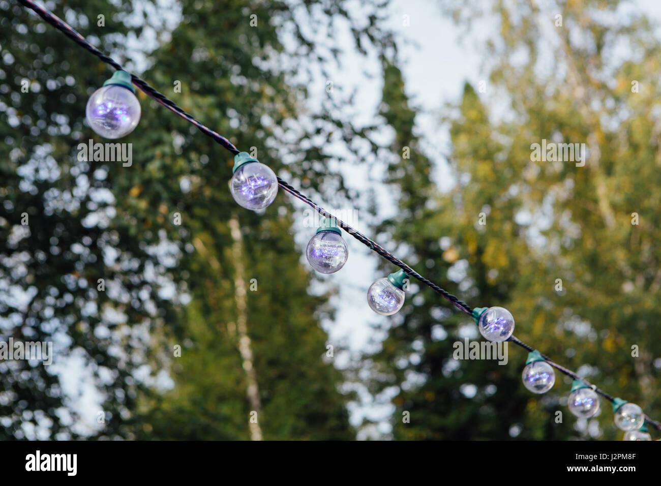 Decorative outdoor string lights hanging on tree in the garden at decorative outdoor string lights hanging on tree in the garden at day time aloadofball Choice Image