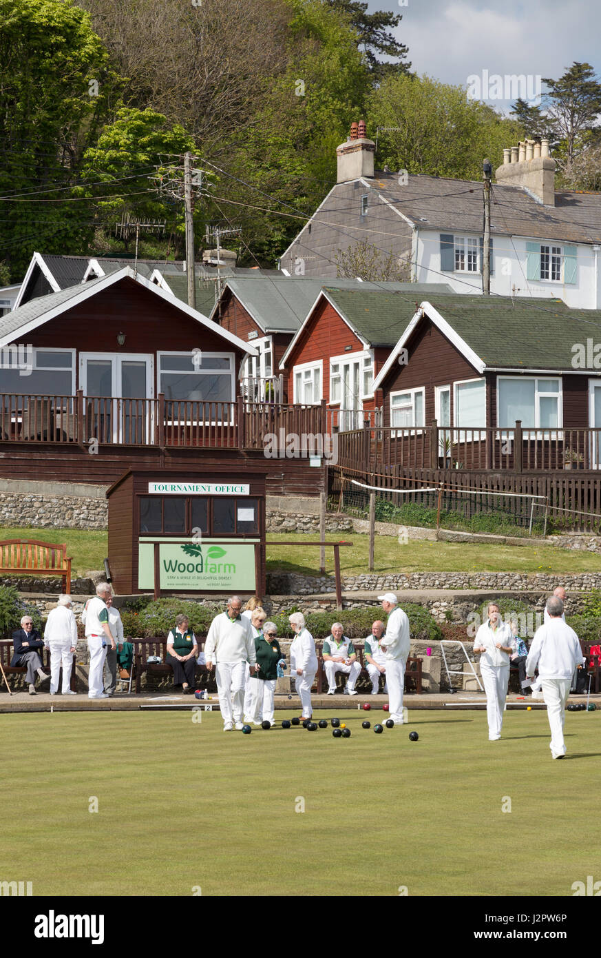 People playing lawn bowls at a lawn bowls club, Lyme Regis, Dorset England UK - Stock Image