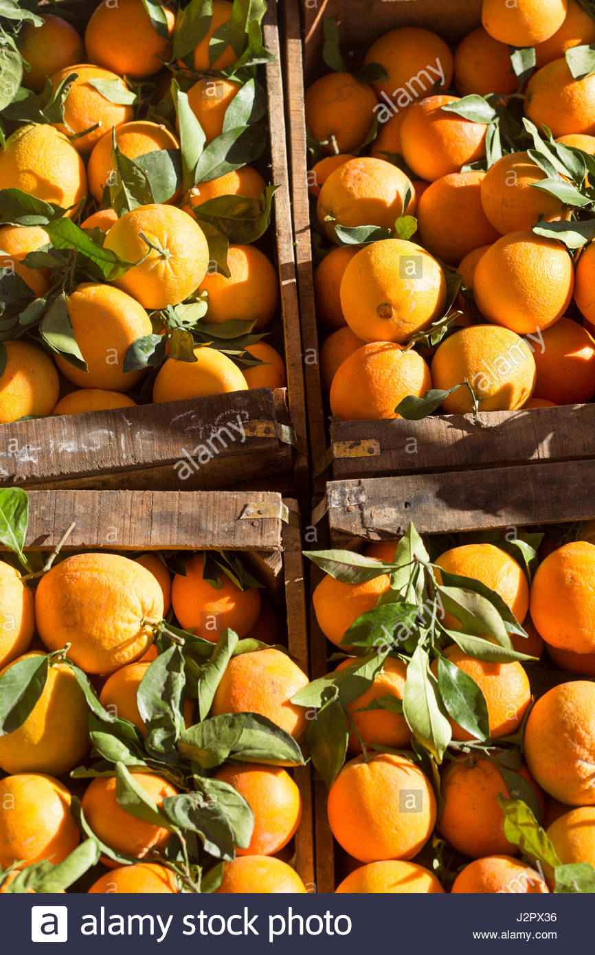 Crate of oranges for sale at the Ifrane souk food market, Middle Atlas region of Morocco - Stock Image