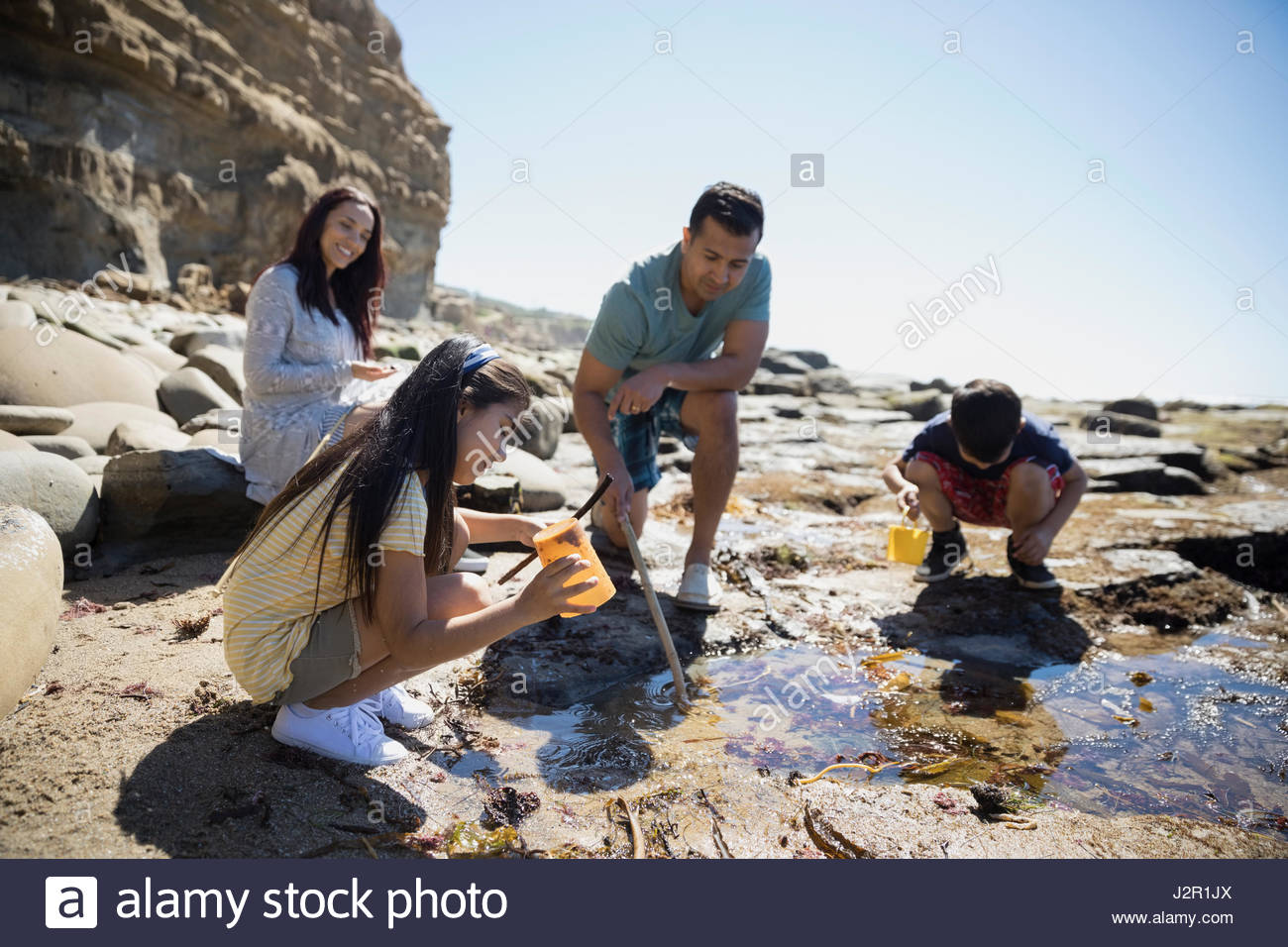 Latino family at tide pool on sunny craggy beach - Stock Image