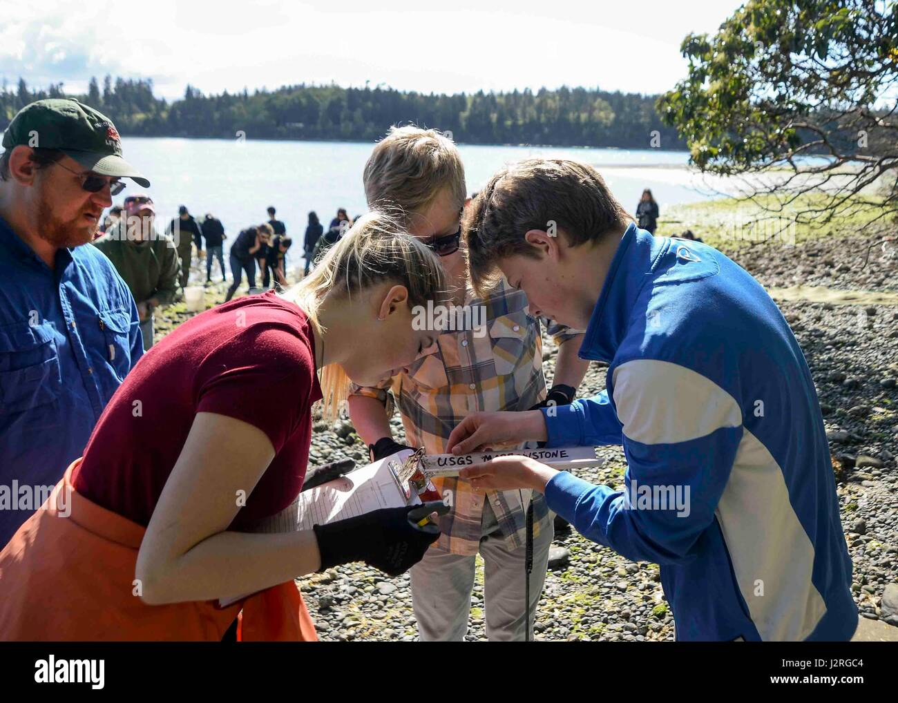 170428-N-VH385-035 INDIAN ISLAND, Wash., (April 28, 2017) – Students from Blue Heron Middle School measure a fish - Stock Image
