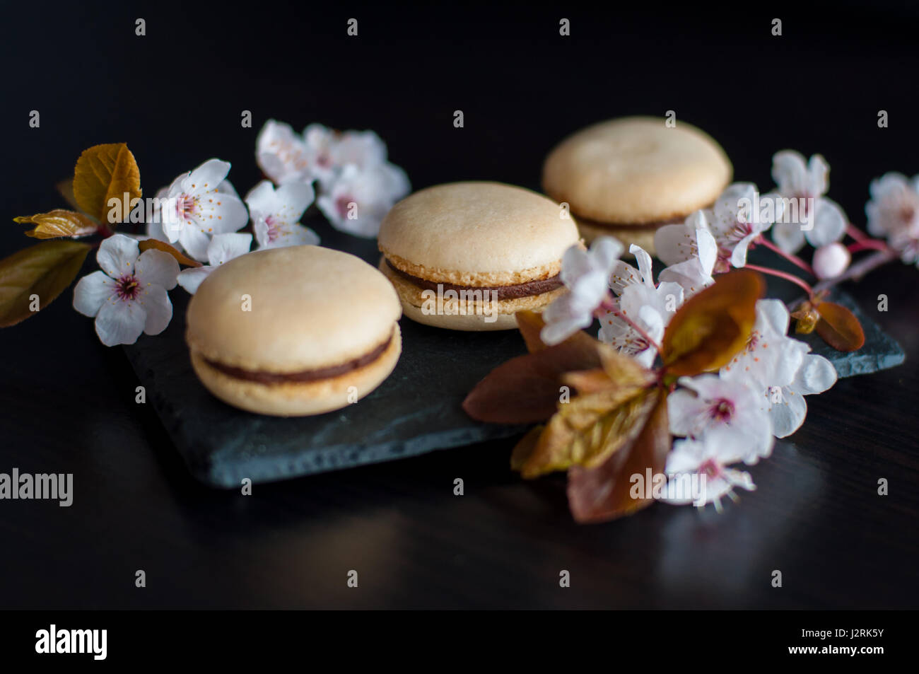 Macaroons decorated with flowers Stock Photo