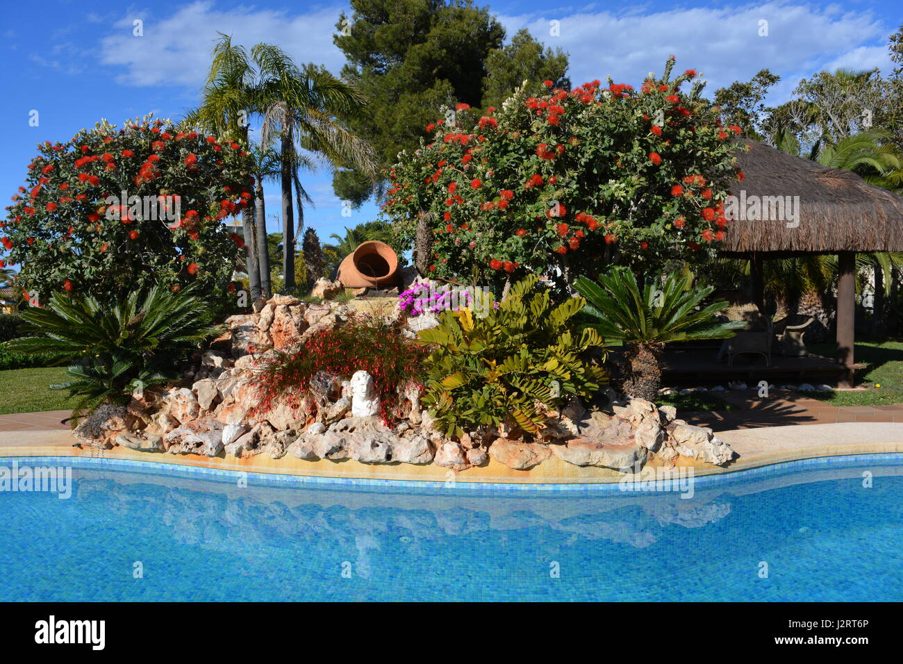 Swimming pool and rockery in Spring,  a garden on the Costa Blanca, Spain - Stock Image