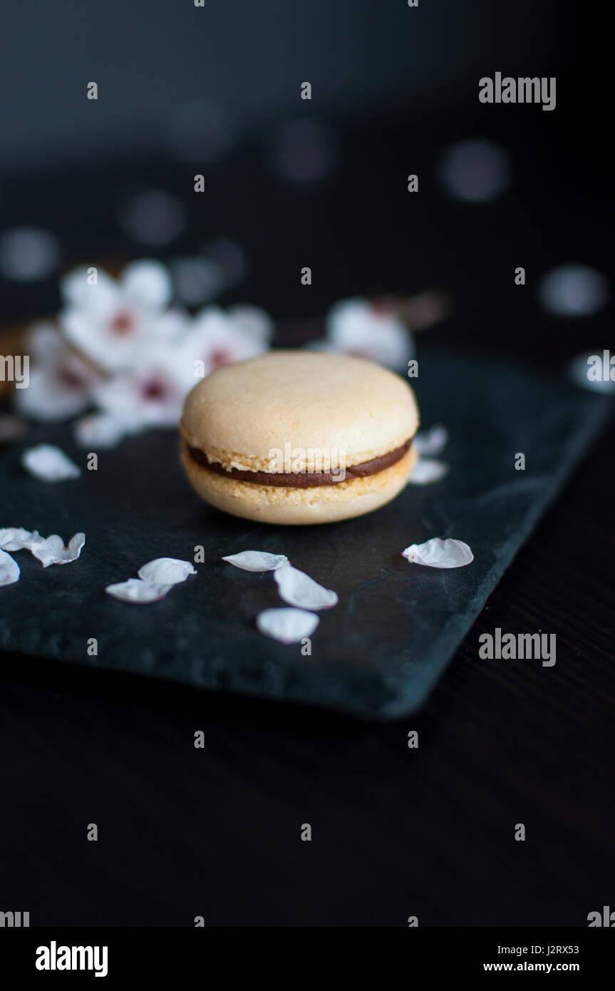 Single macaroon with chocolate cream decorated with white pebbles - Stock Image