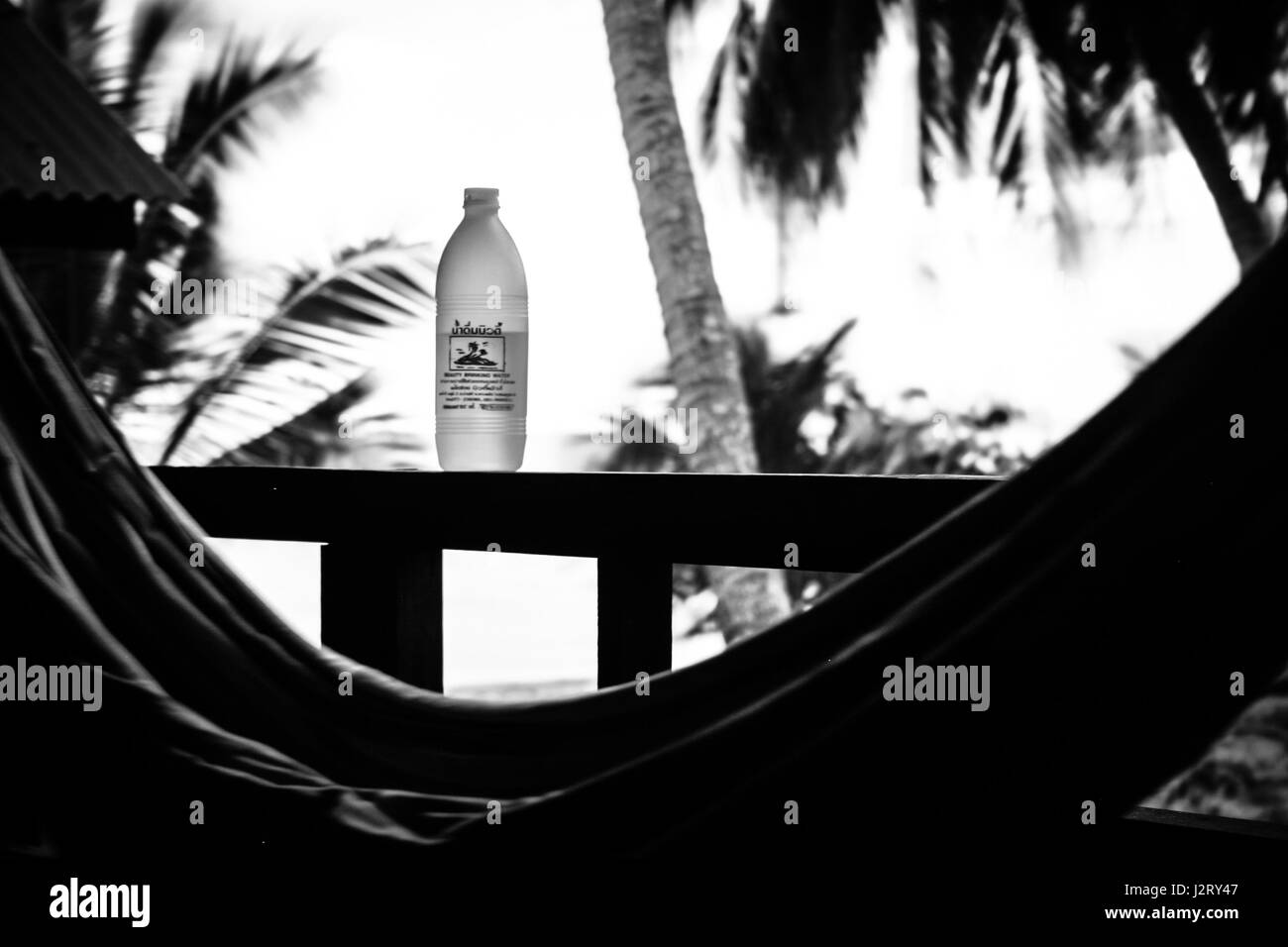 Black and white capture of a hammock and a bottle of water. Palms in background. - Stock Image