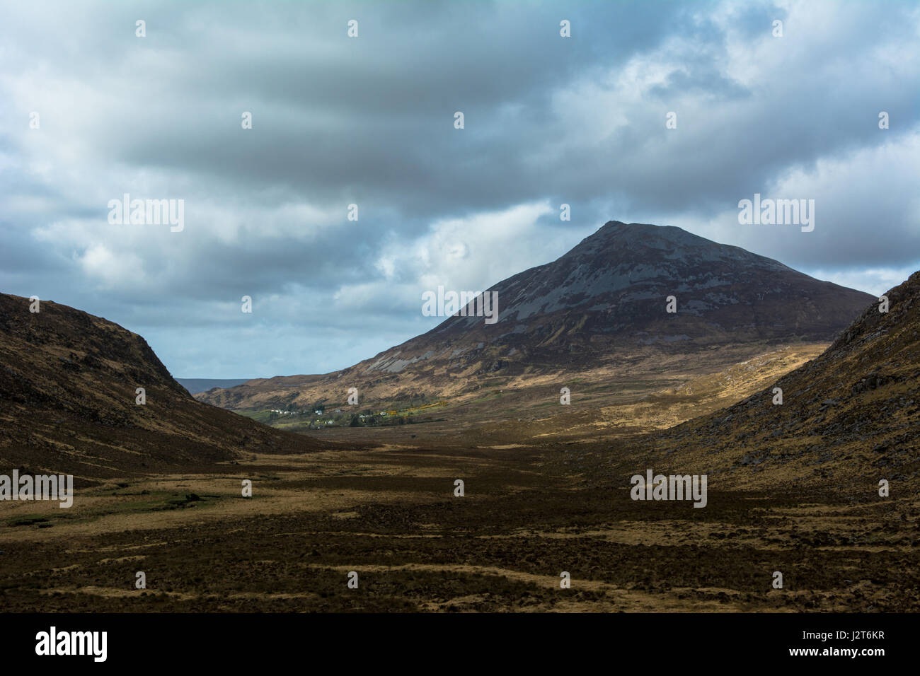 Errigal Mountain The Poisoned Glen Dunlewey Gweedore Donegal Ireland Europe - Stock Image
