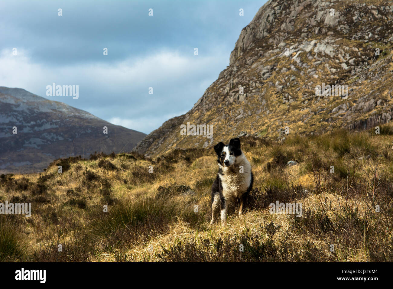 The Poisoned Glen Dunlewey Gweedore  Donegal Ireland Europe - Stock Image
