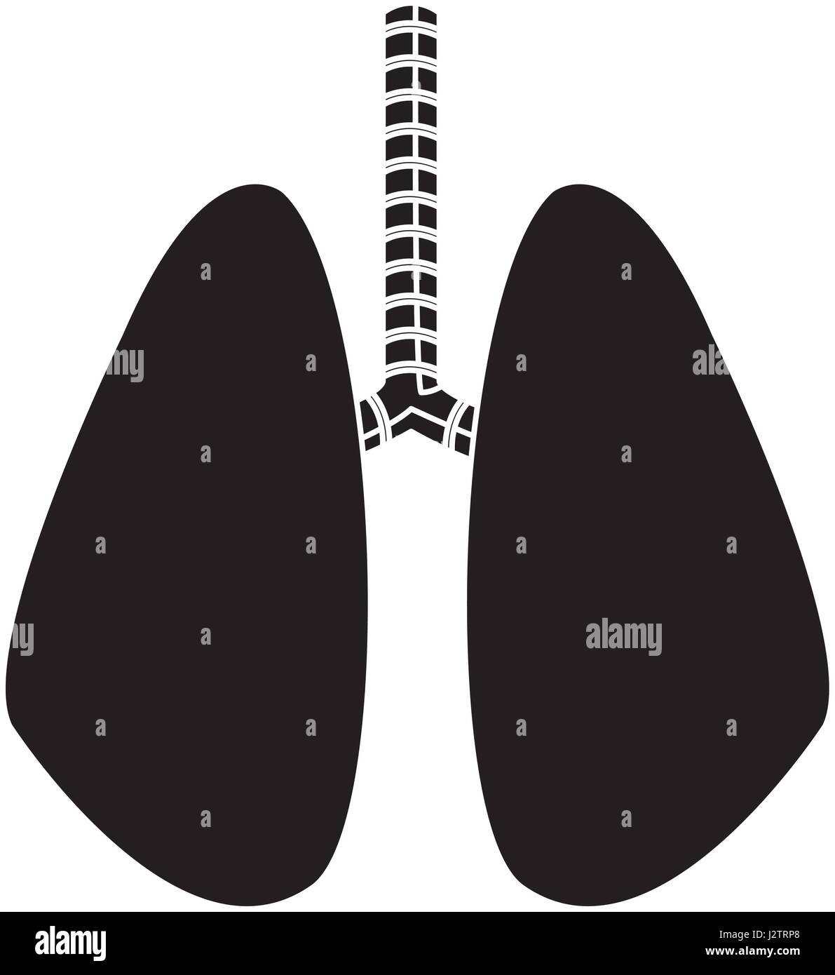 lung human anatomical health silhouette - Stock Image