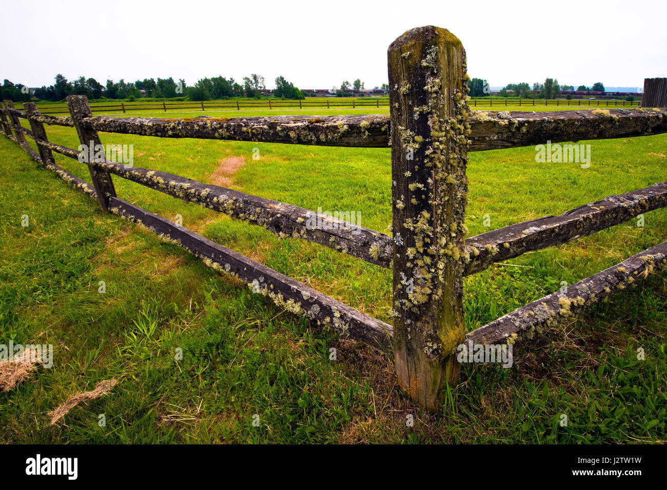 Corner of the old wooden fence of mossy pillars and cross bars mounted on a green meadow, grassy - Stock Image