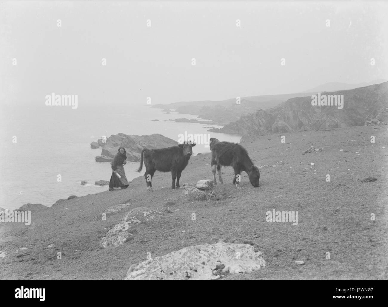 Achill Island (6266263777) - Stock Image